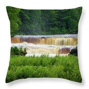 Steamy Lower Tahquamenon  Throw Pillow