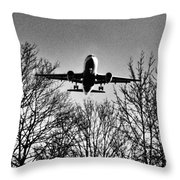 Steel Bird Throw Pillow