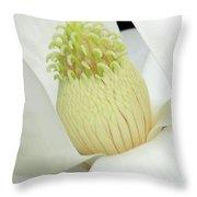 Steel Magnolia 41 Throw Pillow