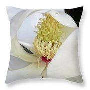Steel Magnolia 43 Throw Pillow