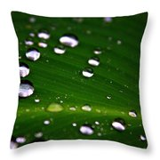 Steel Rain Throw Pillow