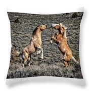 Steens Drama Throw Pillow
