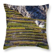 Steep Slope Viticulture In Valais Canton Throw Pillow