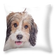 Stella1 Throw Pillow