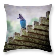 Stellar Jay Throw Pillow