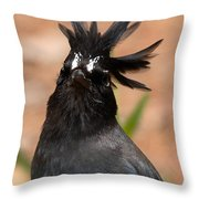 Stellar's Jay With Rock Star Hair Throw Pillow