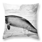 Stellers Sea Cow, Extinct Throw Pillow