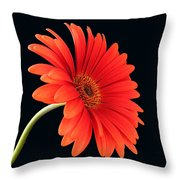Stemming Beauty Throw Pillow