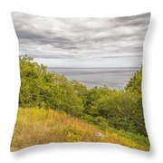 Stenshuvud Sea View Throw Pillow
