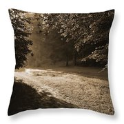 Step Out Of The Shadow Throw Pillow