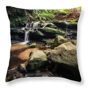Stepping Cascade - Leura, Blue Mountains, Australia. Throw Pillow
