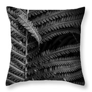 Stepping Out Of Line Throw Pillow