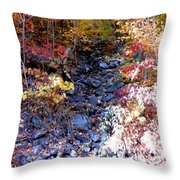 Stepping Stones At Autumn Forest Throw Pillow