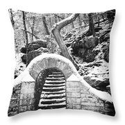 Steps Along The Wissahickon Throw Pillow