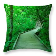 Steps Into Paradise Throw Pillow
