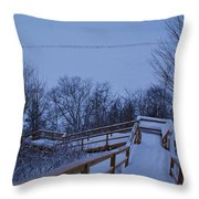Steps Into Winter Throw Pillow