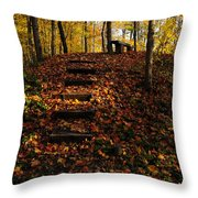 Steps To Bench Throw Pillow