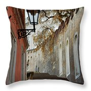 Steps To Saint Vitus Throw Pillow