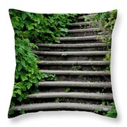 Steps With Ivy Throw Pillow