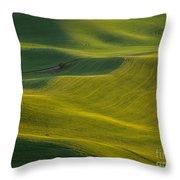 Steptoe Butte 11 Throw Pillow