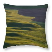 Steptoe Butte 12 Throw Pillow