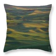 Steptoe Butte 13 Throw Pillow
