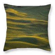 Steptoe Butte 14 Throw Pillow