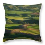Steptoe Butte 4 Throw Pillow