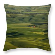 Steptoe Butte 5 Throw Pillow
