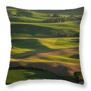 Steptoe Butte 6 Throw Pillow