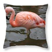 Stern Flamingo Throw Pillow