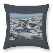 Sterne Throw Pillow