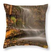 Stewart Falls II Throw Pillow