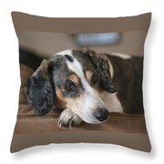 Stewie - Family Dog Throw Pillow