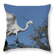 Stick Coming In Throw Pillow