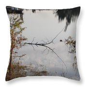 Stick In The Water Throw Pillow
