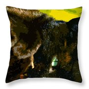 Stick Play Throw Pillow