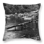 Sticking Around... Throw Pillow