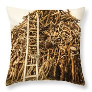 Sticks And Ladders Throw Pillow