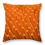 Sticks Throw Pillow