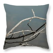 Sticks In The Water Throw Pillow