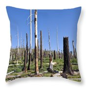 Sticks Throw Pillow