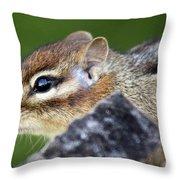 Still  Chipmunk Throw Pillow