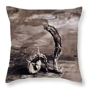 Still Life #13999 Throw Pillow