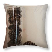 Still Life Of A Glass Jar Of Pine Cones Throw Pillow