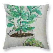 Still Life Plants Throw Pillow