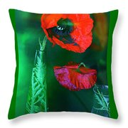Still Life With Poppies. Throw Pillow