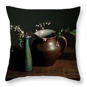 Still Life With Stoneware  Throw Pillow