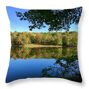 Still Morning Throw Pillow