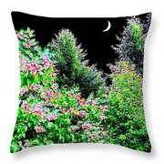 Still Of The Night Throw Pillow